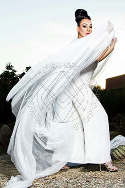 Foto 25 di Cleopatra Ts transexescort Reggio Emilia